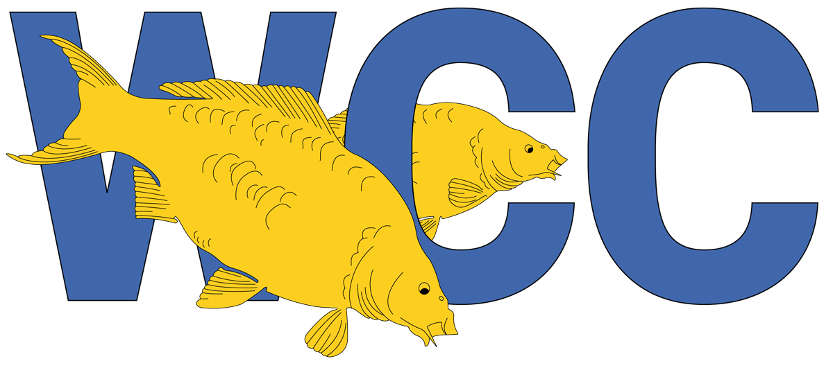 WCC-2-fishes-with-colour-cropped