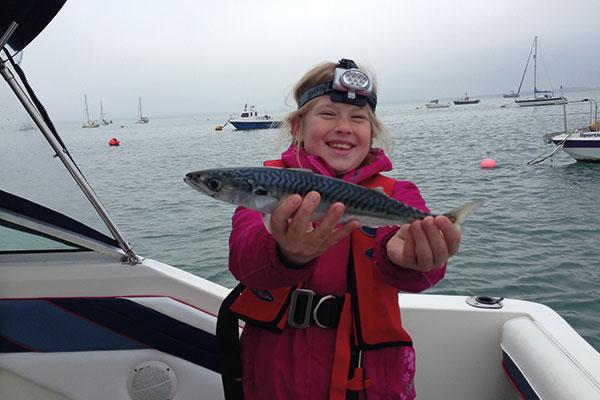 600x400-Sophie-holing-mackerel